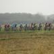 Gran Piemonte 2019 - Le profil de la course