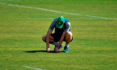 [Vidéo] La pelouse du stade de Fukuoka en kit