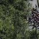 Critérium du Dauphiné 2020 - Le profil de la 4ème étape