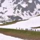 Critérium du Dauphiné 2020 - Le profil des étapes