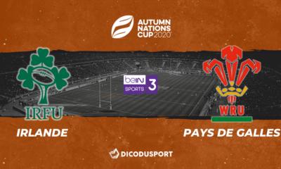 Autumn Nations Cup : Notre pronostic pour Irlande - Pays de Galles