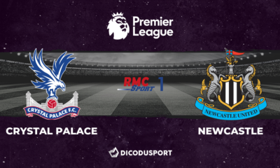 Football - Premier League - notre pronostic pour Crystal Palace - Newcastle