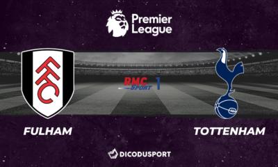 Football - Premier League notre pronostic pour Fulham - Tottenham