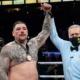 Boxe poids lourds - Retour gagnant pour Andy Ruiz Jr
