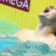 24 juillet 2019 : Kristóf Milák efface le record du monde de Michael Phelps