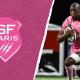 Top 14 - Stade Français, la saison de la confirmation